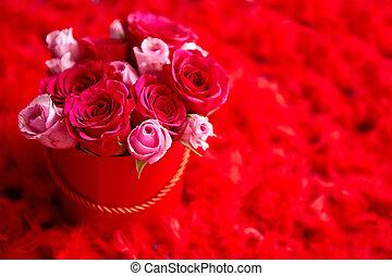 roze, doosje, ruimte, veertjes, geplaatste, ingepakte, achtergrond, rozen, kopie, rood