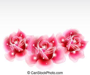 roze, elements., rozen, vector, ontwerp, floral