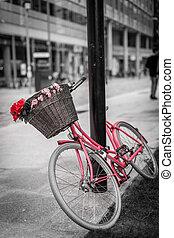 roze, fiets, rood