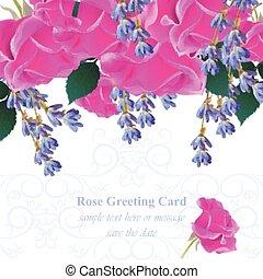 roze, flowers., fuchsia, lavendel, uitnodiging, rozen, kleuren, vector., huwlijkskaart