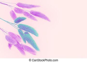 roze, foto, verwerking, flowers., achtergrond., staart, droog, konijn, gras, zacht, artistiek