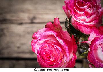 roze, fris, witte , rozen