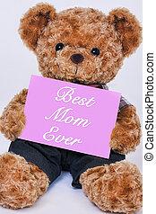 roze, gezegde, houdend teddy draag, meldingsbord, mamma, ooit, best