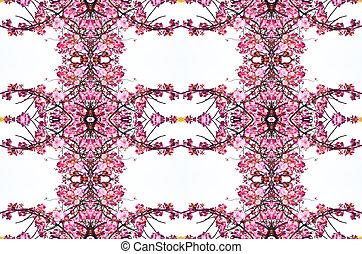 roze, kers ontwikkelt