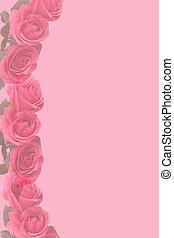 roze, langzaam verdwenen, rozen, stationair