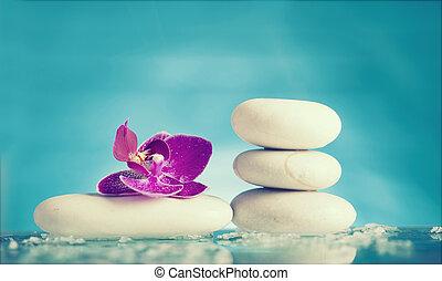 roze, leven, zen, steen, sereniteit, spa, witte , nog, pool, orchidee
