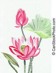 roze, lotus bloem, het schilderen watercolor