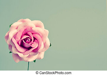 roze, ouderwetse , lege, space., roos
