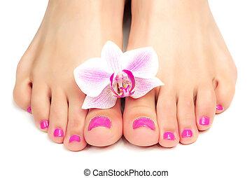 roze, pedicure, met, een, orchidee, bloem