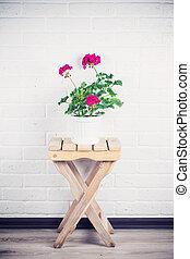 roze, staand, houten, pot, tegen, w, witte , stoel, pelargonium