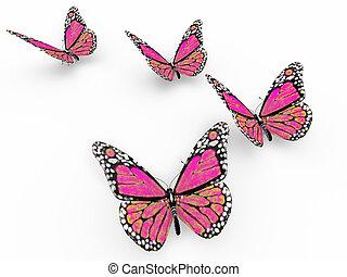 roze, vlinder