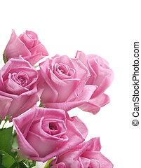 rozen, grens