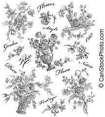 rozen, illustratie