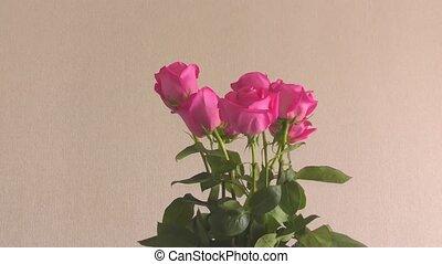 rozen, leven, nog