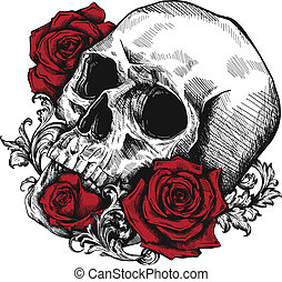 rozen, menselijk, witte , schedel, achtergrond