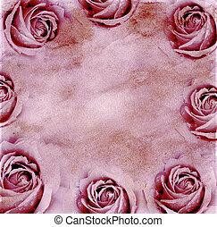 rozen, papier, achtergrond
