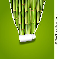 rozerwał, illustration., paper., wektor, tło, bambus