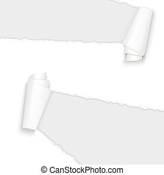 rozerwał, papier, otwarty, biały