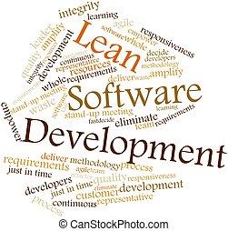 rozwój, chudy, software