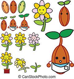 rozwój, kwiat, wektor