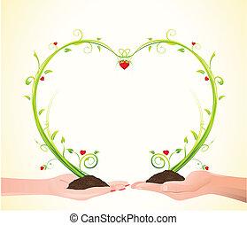 rozwój, miłość