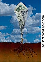 rozwój, pieniądze.