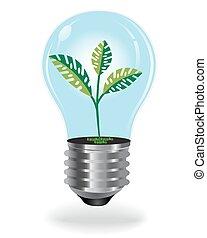 rozwój, rośliny, bulwa