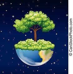 rozwój, zielone drzewo, ziemia