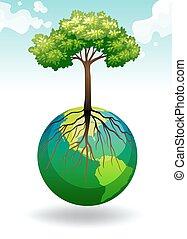 rozwój, ziemia, drzewo
