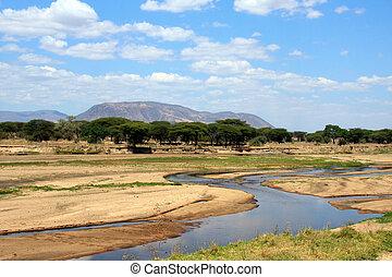 Ruaha river in dry season - African landscape: Ruaha river...
