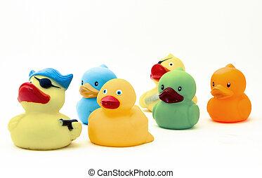 duck, s