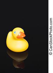 rubber duckie, reflectie