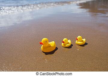rubber, strand, gele, eenden