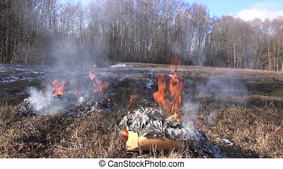 Rubbish burning in spring - Two heaps of rubbish burning in...