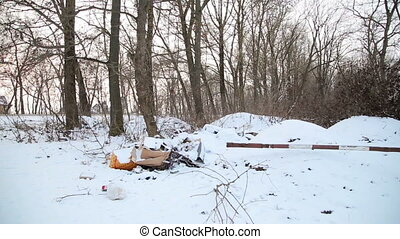Rubbish in the forest winter