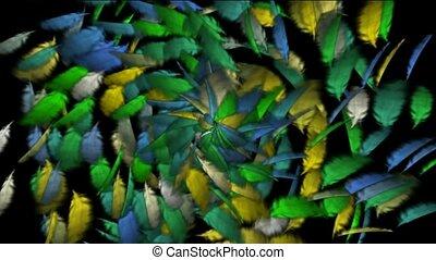 ruch obrotowy, od, kolor, przelotny, pióro, tło