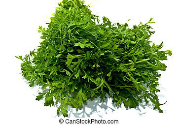 Rucola isolated on white background .