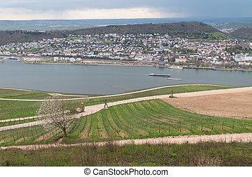 rudesheim rhein Germany - background panoramic rudesheim...