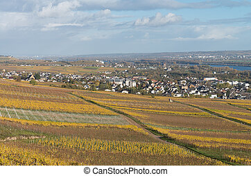 Rudesheim rhein Germany - The Rudesheim am rhein Germany...