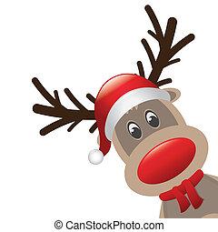 rudolph reindeer red nose