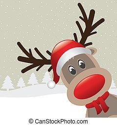 rudolph, renne, nez, chapeau, écharpe, rouges
