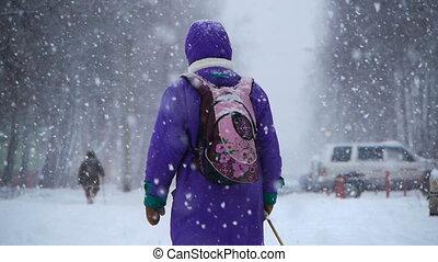 rue, hiver, gens