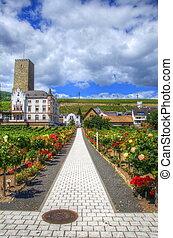 Ruedelsheim, Hessen, Germany