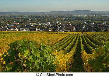 Ruedesheim Eibingen Abbey 02