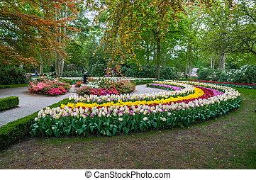 ruela, entre, coloridos, tulips, keukenhof, parque, lisse, em, holanda