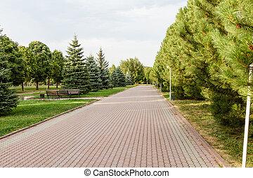 ruelle, dans ville, parc