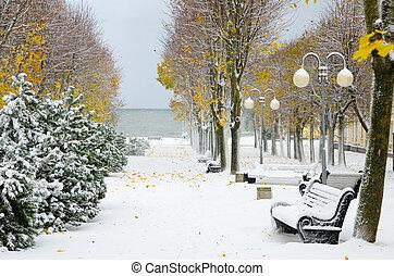 ruelle, later, autumn., neige, parc, orage