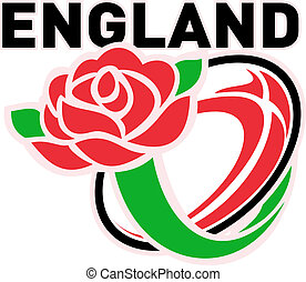 rugby, angleterre, rose, balle