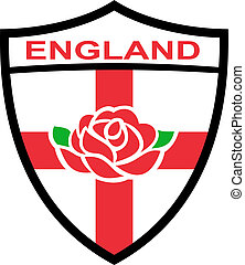 rugby, angleterre, rose, bouclier