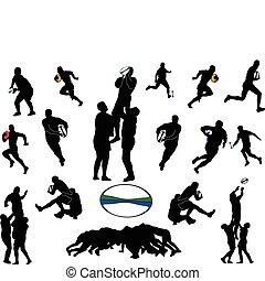 rugby, vettore, -, collezione